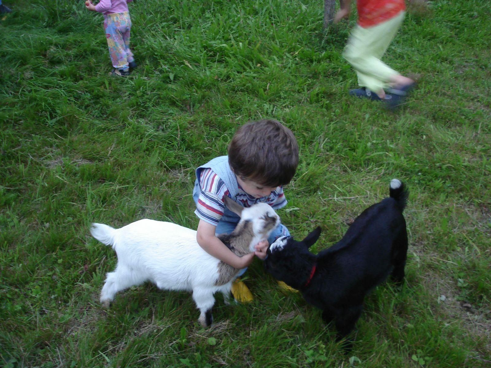 Gebhardts und Tiere (32)