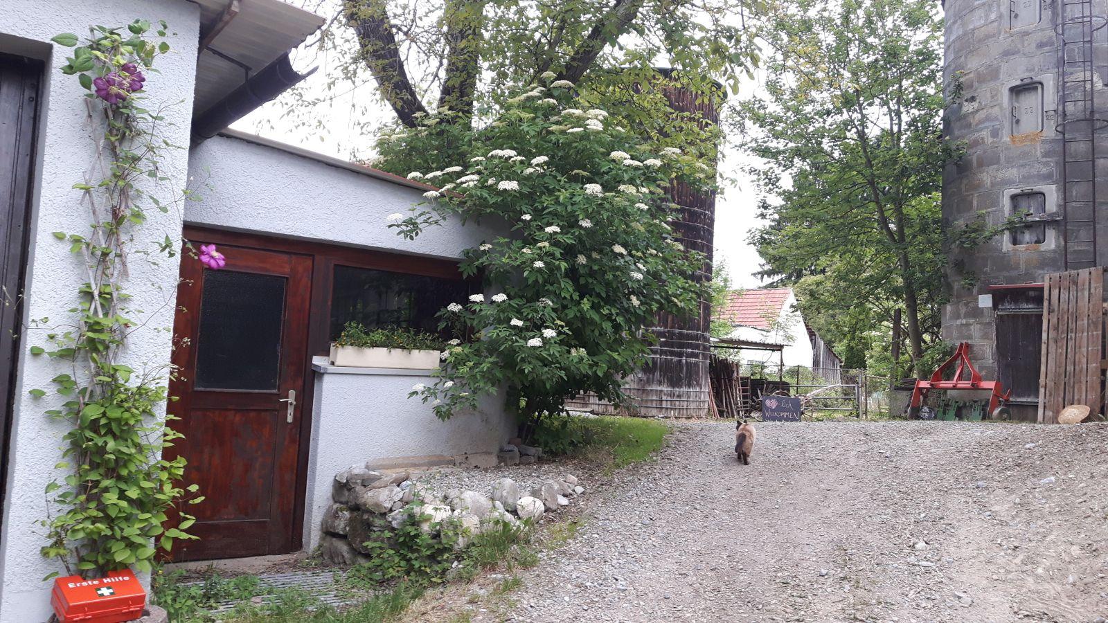 Haus und Hof (3)