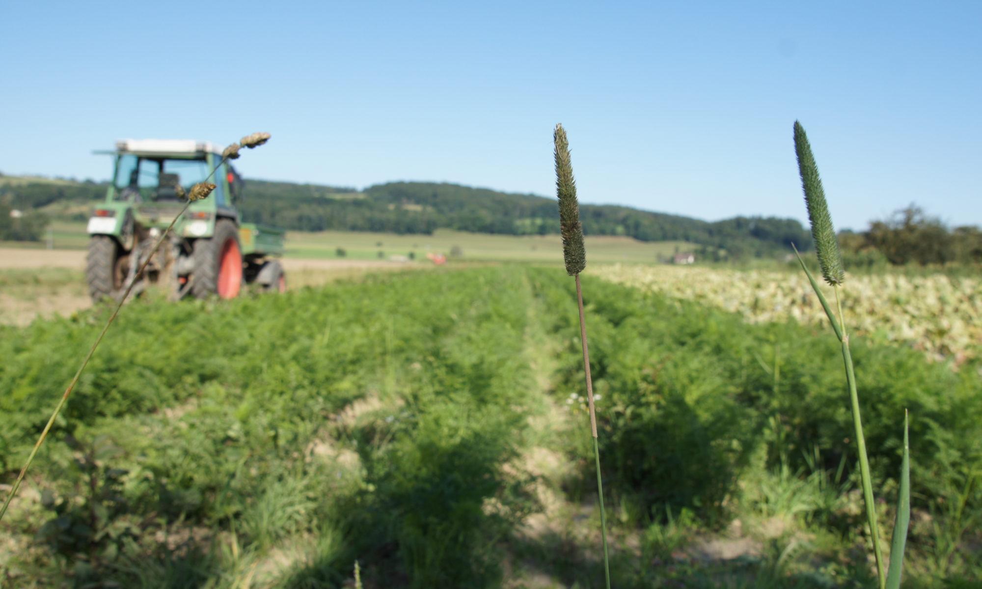 Bioland Hof- und Naturkostladen Gebhardt